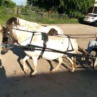 Black PLAIN RED BB Size A// B Mini Sh Pony Driving show training cart harness NEW