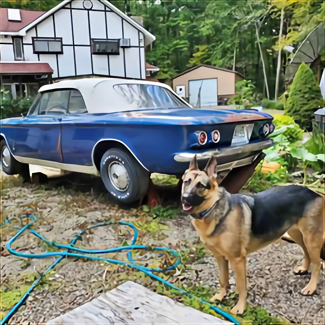 Corvair Rampside for sale compared to CraigsList | Only 4 ...