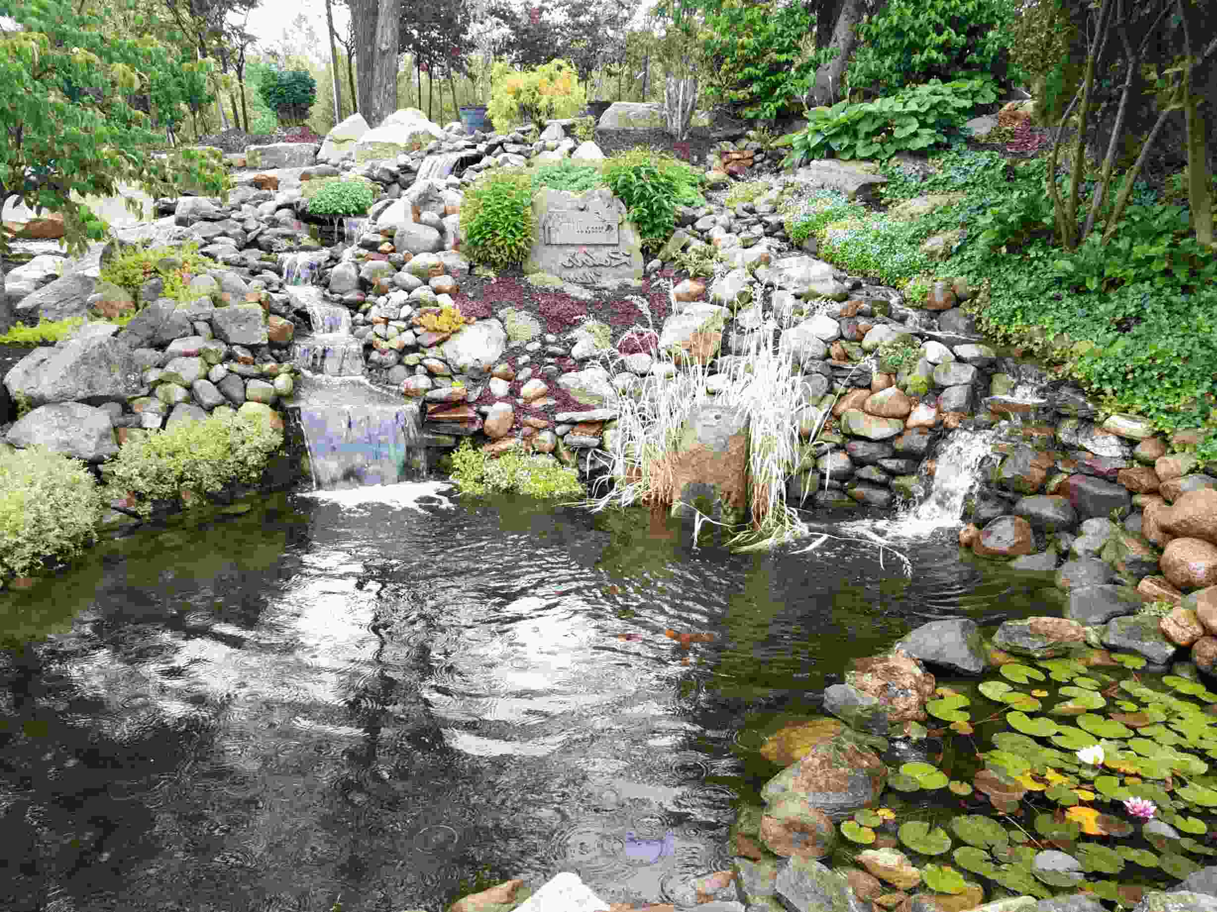 water pond for sale