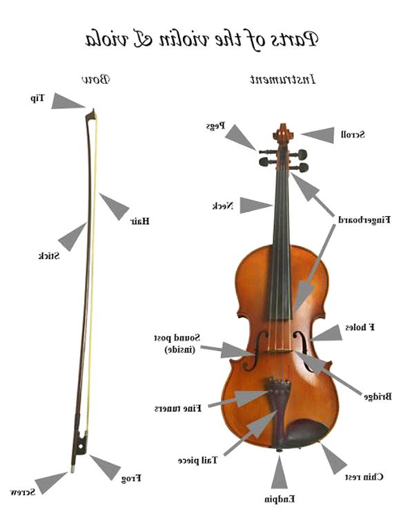 Violin Parts For Sale Only 4 Left At 75