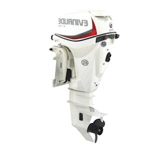 evinrude outboard motor for sale