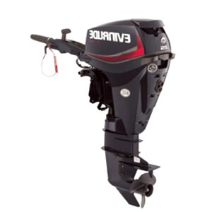 evinrude 25 hp for sale