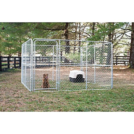 10 x 10 dog kennel for sale