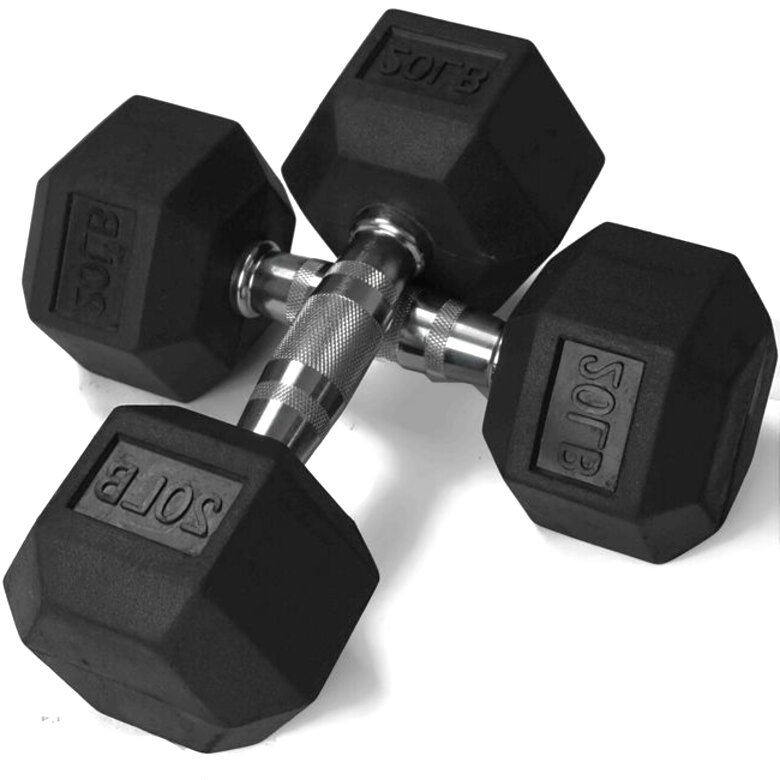 pair 20lb dumbbells for sale