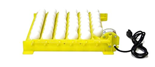 automatic egg turner for sale