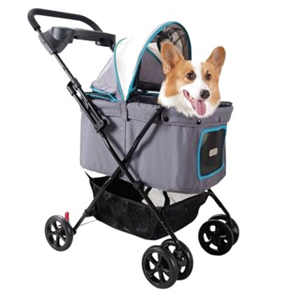dog buggy for sale