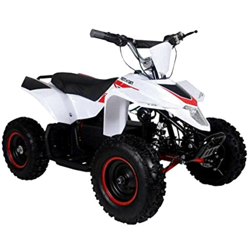 Racing Four Wheelers For Sale On Craigslist - Suse Racing