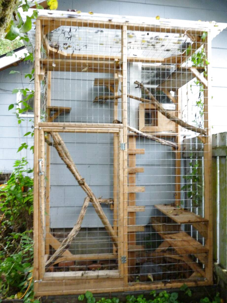outdoor cat cage for sale