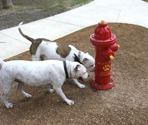 dog fire hydrant for sale