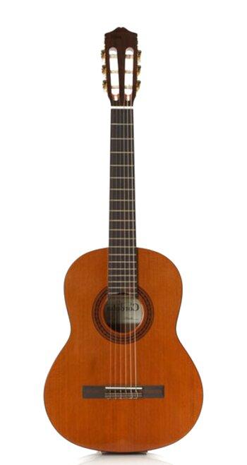 nylon string guitar for sale