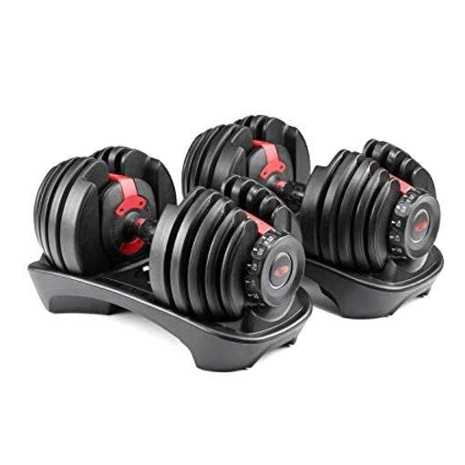 bowflex dumbbells for sale