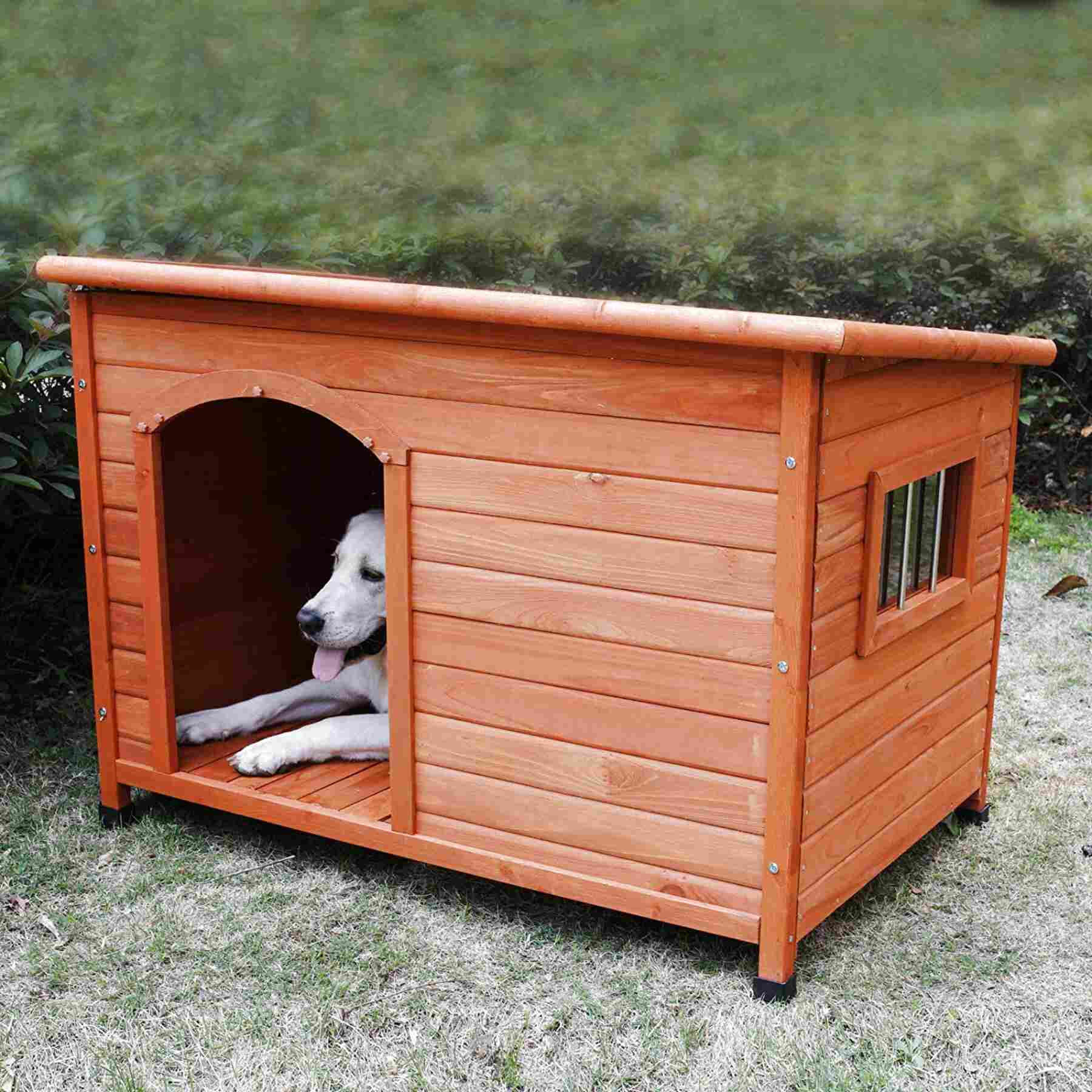 outside dog houses for sale