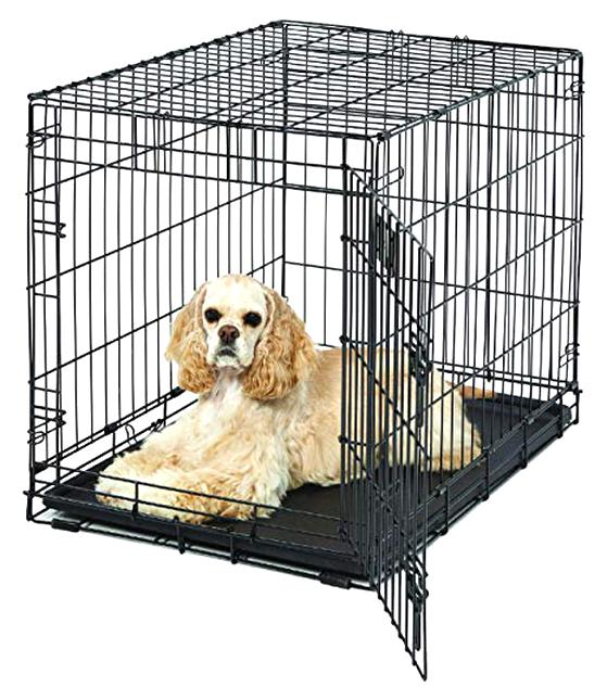 medium dog crate for sale