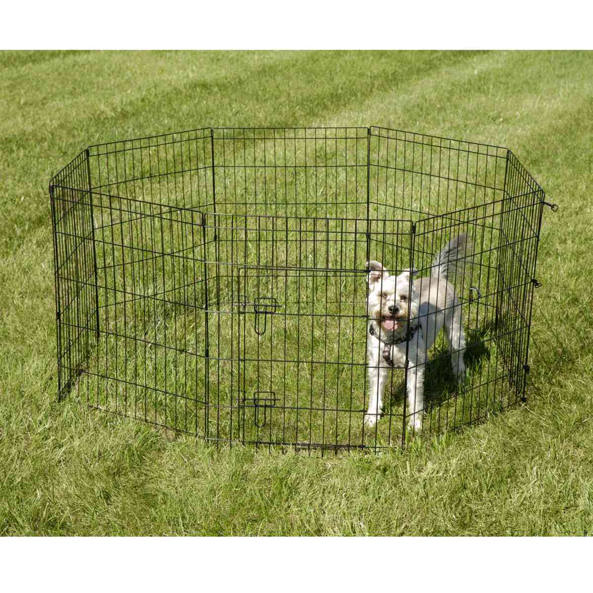 dog fence wire for sale