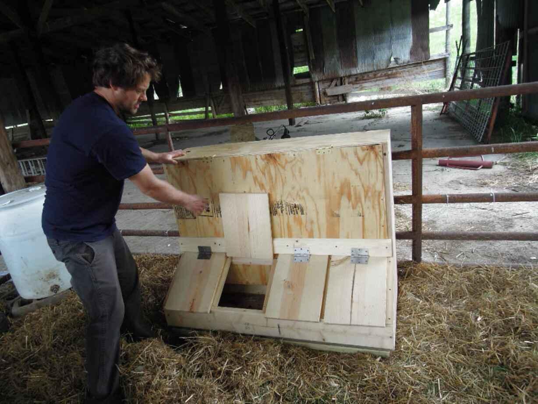 pig trough for sale