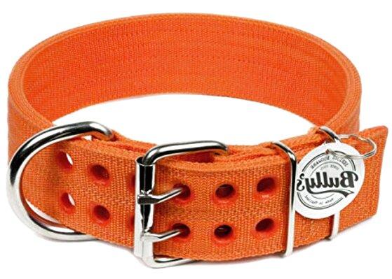 pitbull collars for sale
