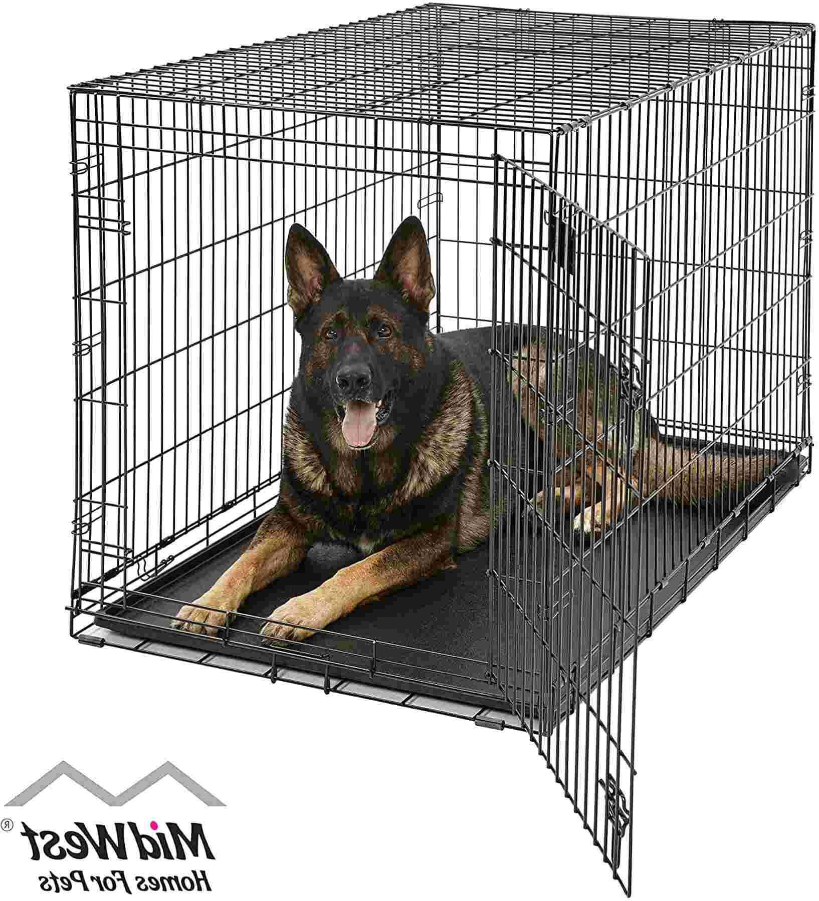 xl dog crate kennel for sale