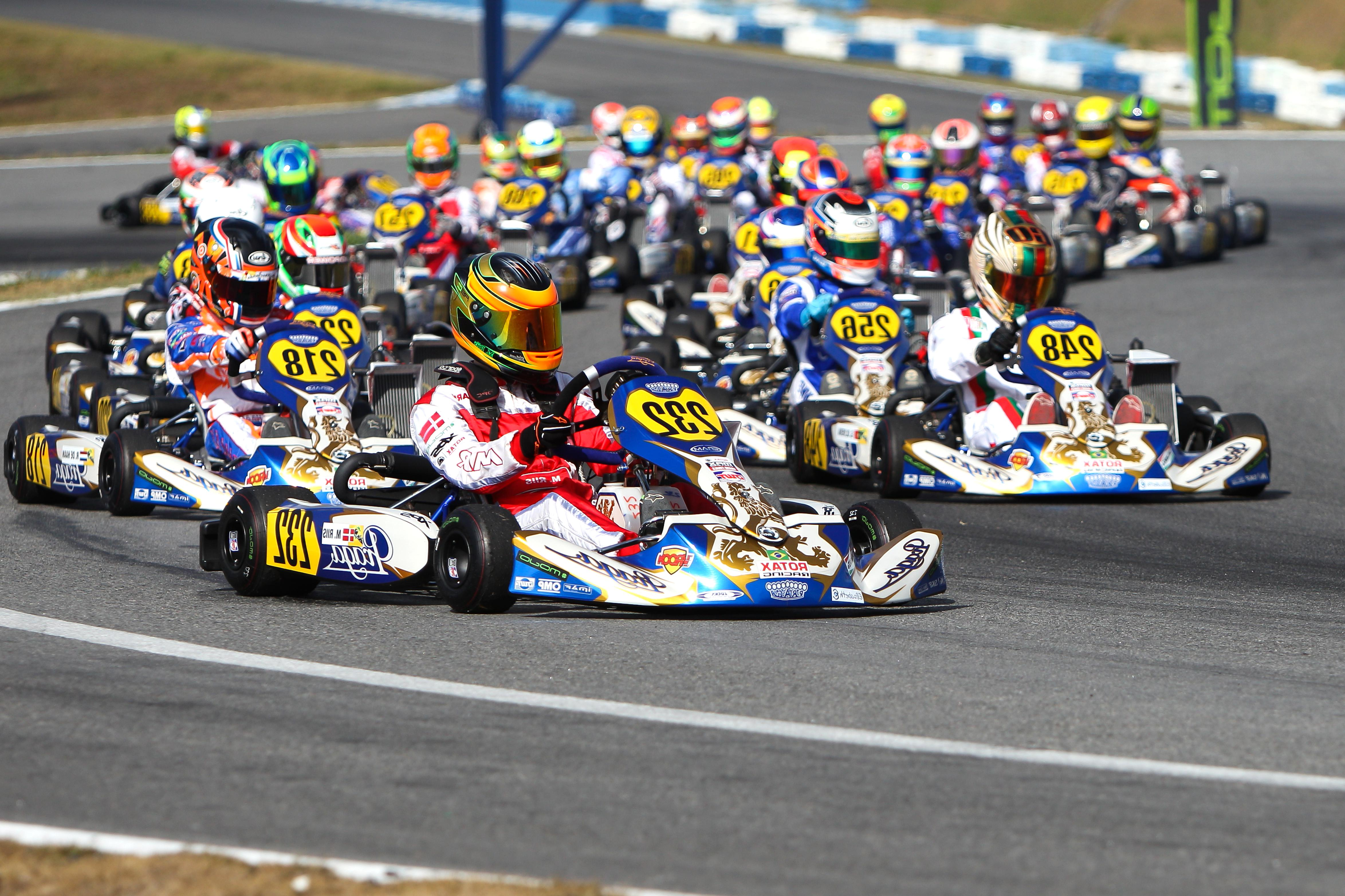 rotax kart for sale