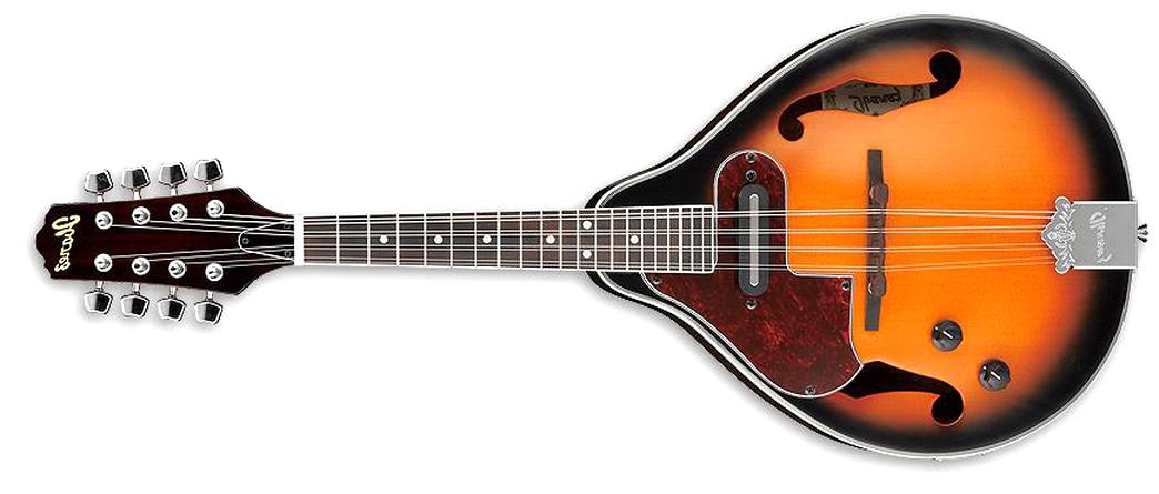 acoustic electric mandolin for sale