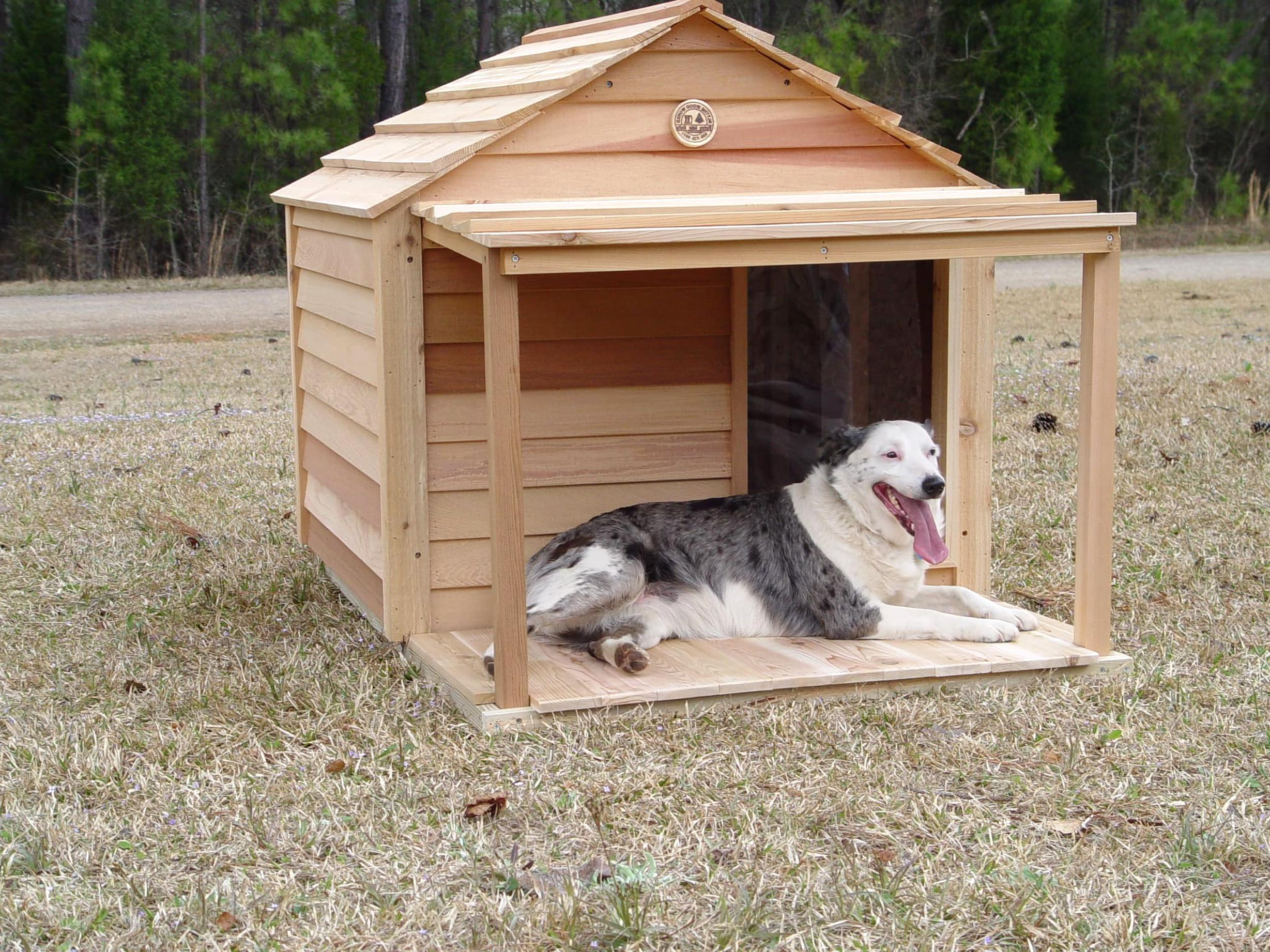outdoor dog house for sale