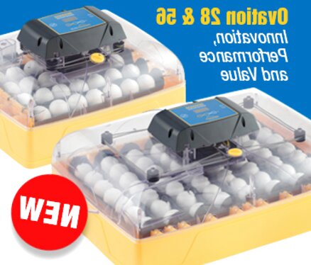 brinsea incubator for sale