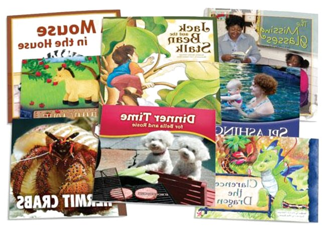 leveled reading recovery books for sale
