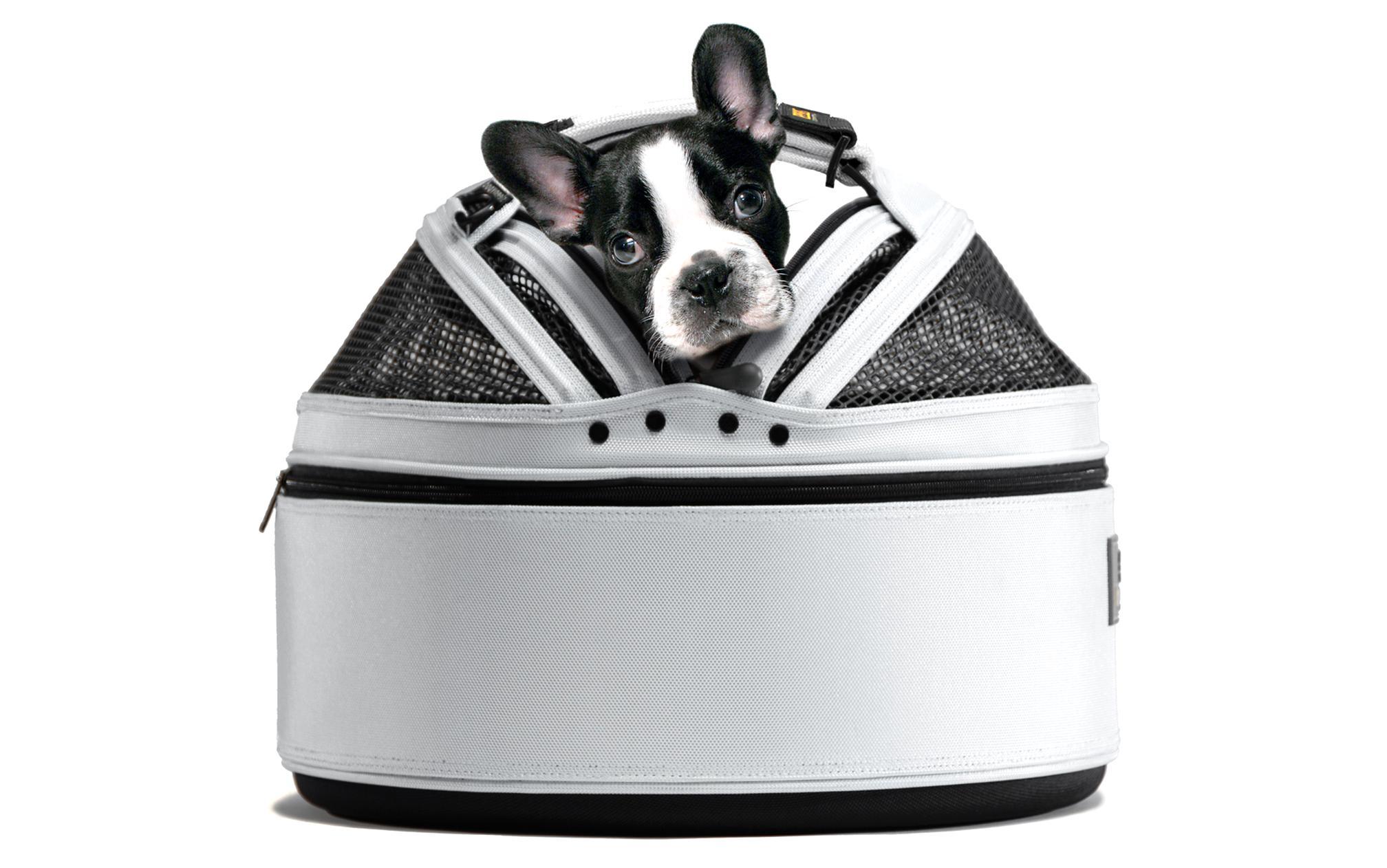 pet carrier sleepypod for sale