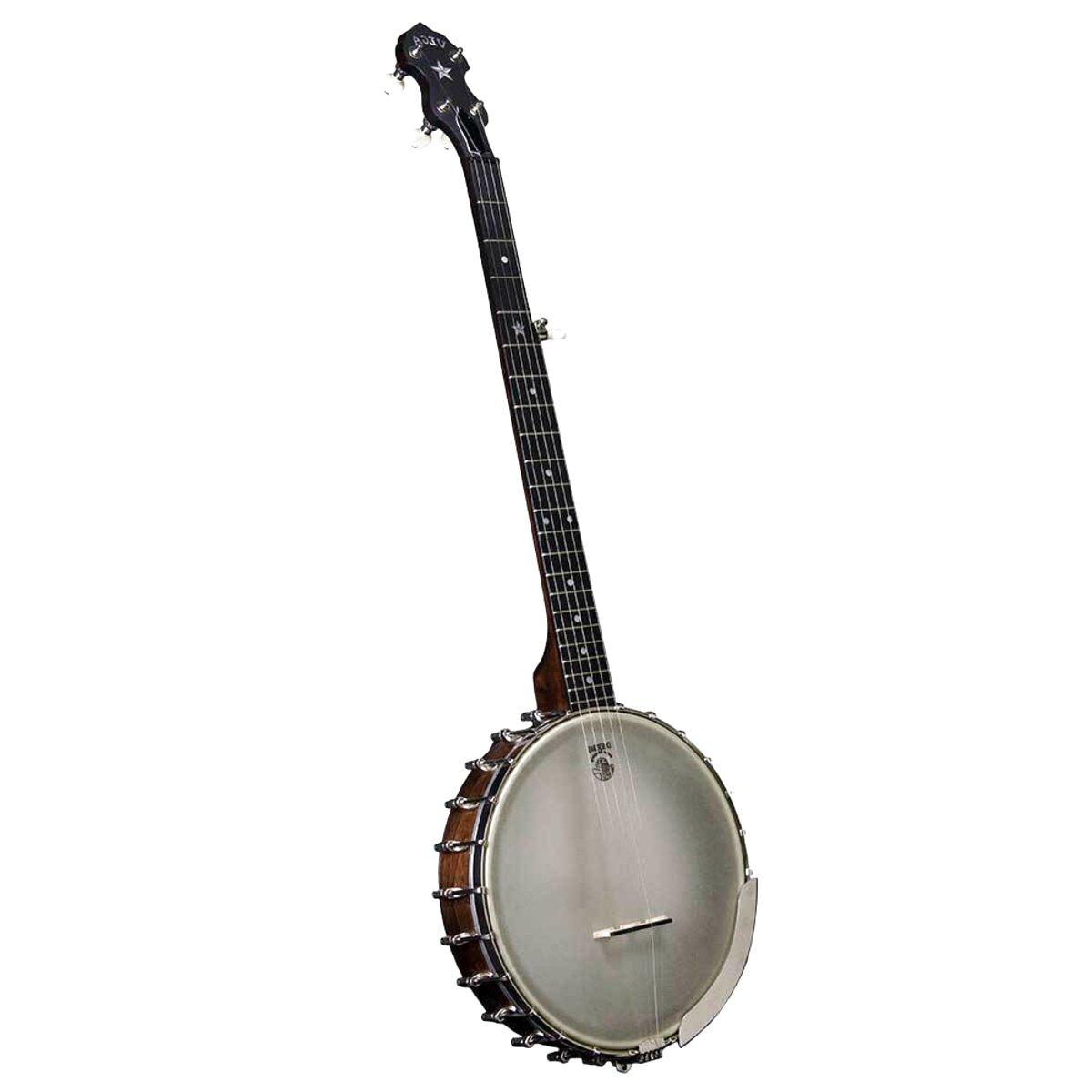 vega 5 string banjo for sale