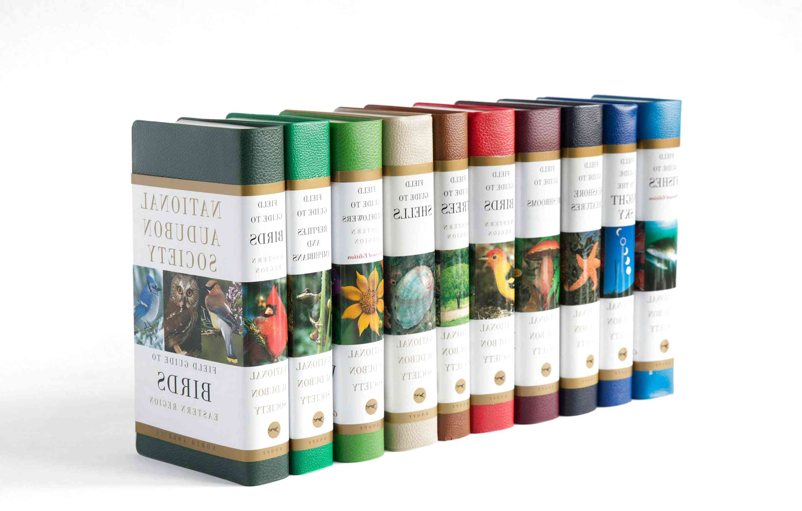 Audubon Books for sale | Only 4 left at -75%