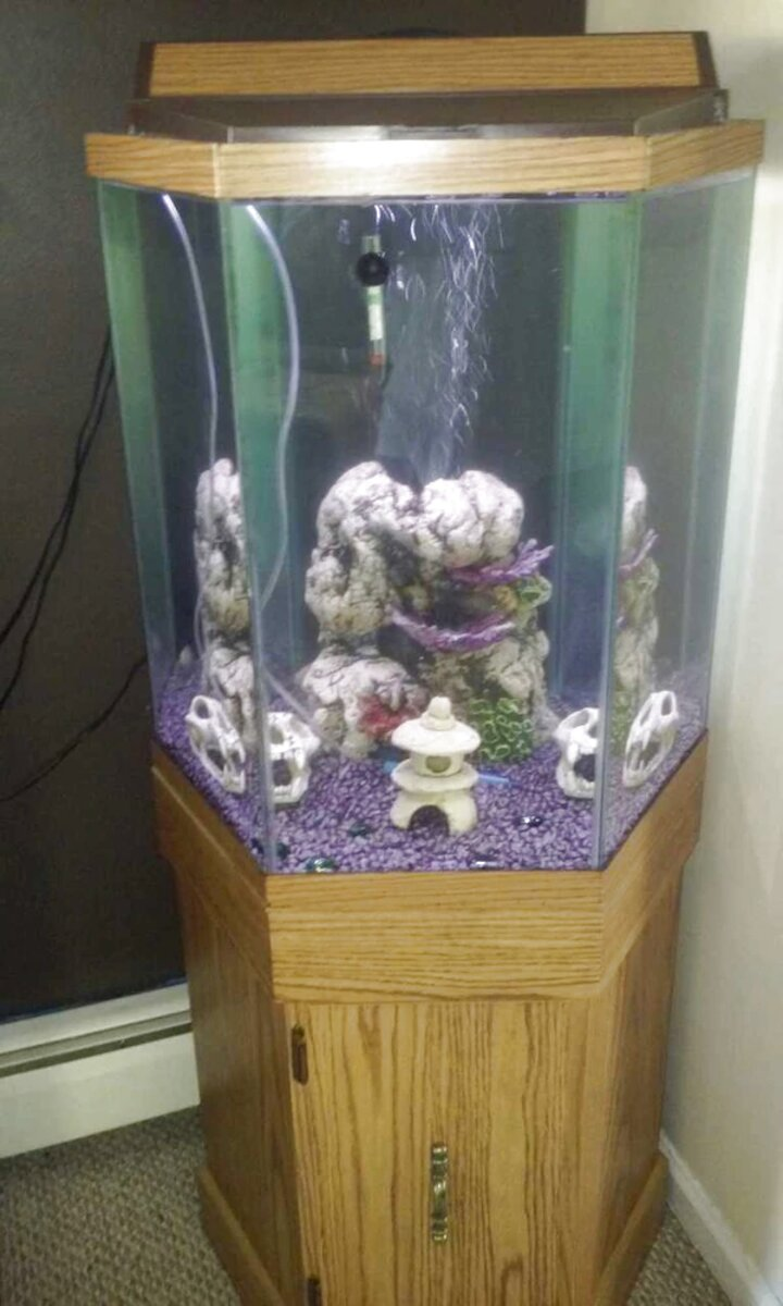 Octagon Fish Tank For Only 2