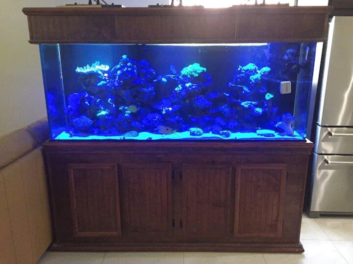 150 gallon aquarium for sale
