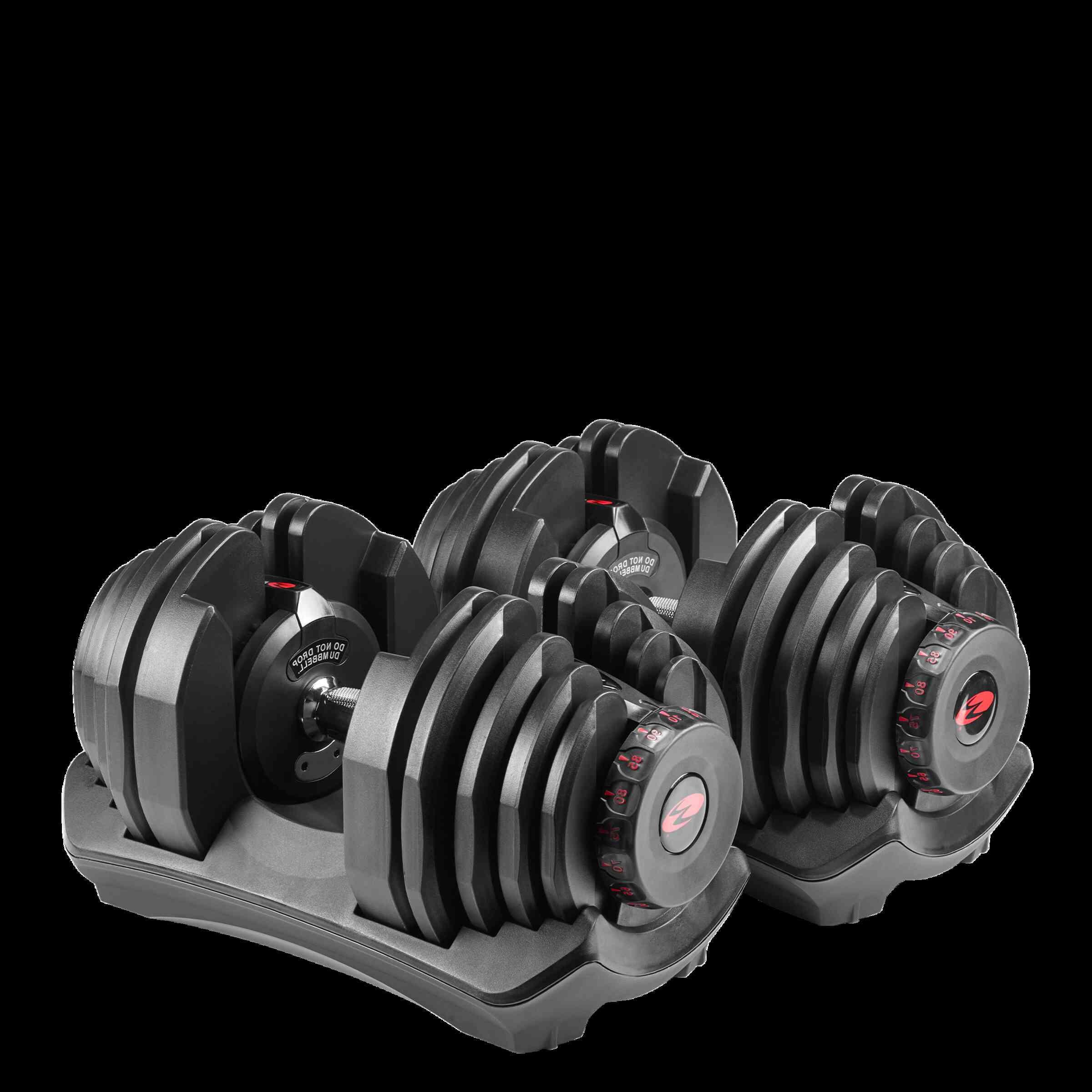 bowflex dumbbells 1090 for sale