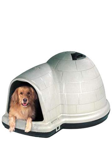 igloo dog house for sale