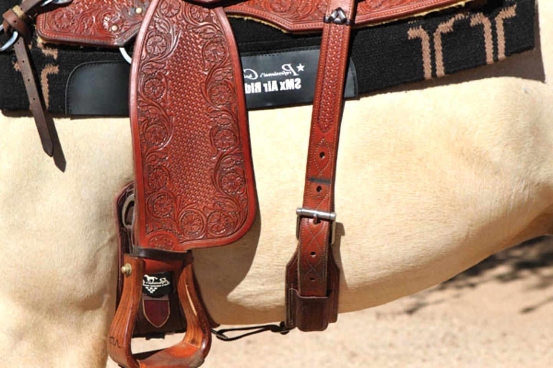 saddle back cinch for sale
