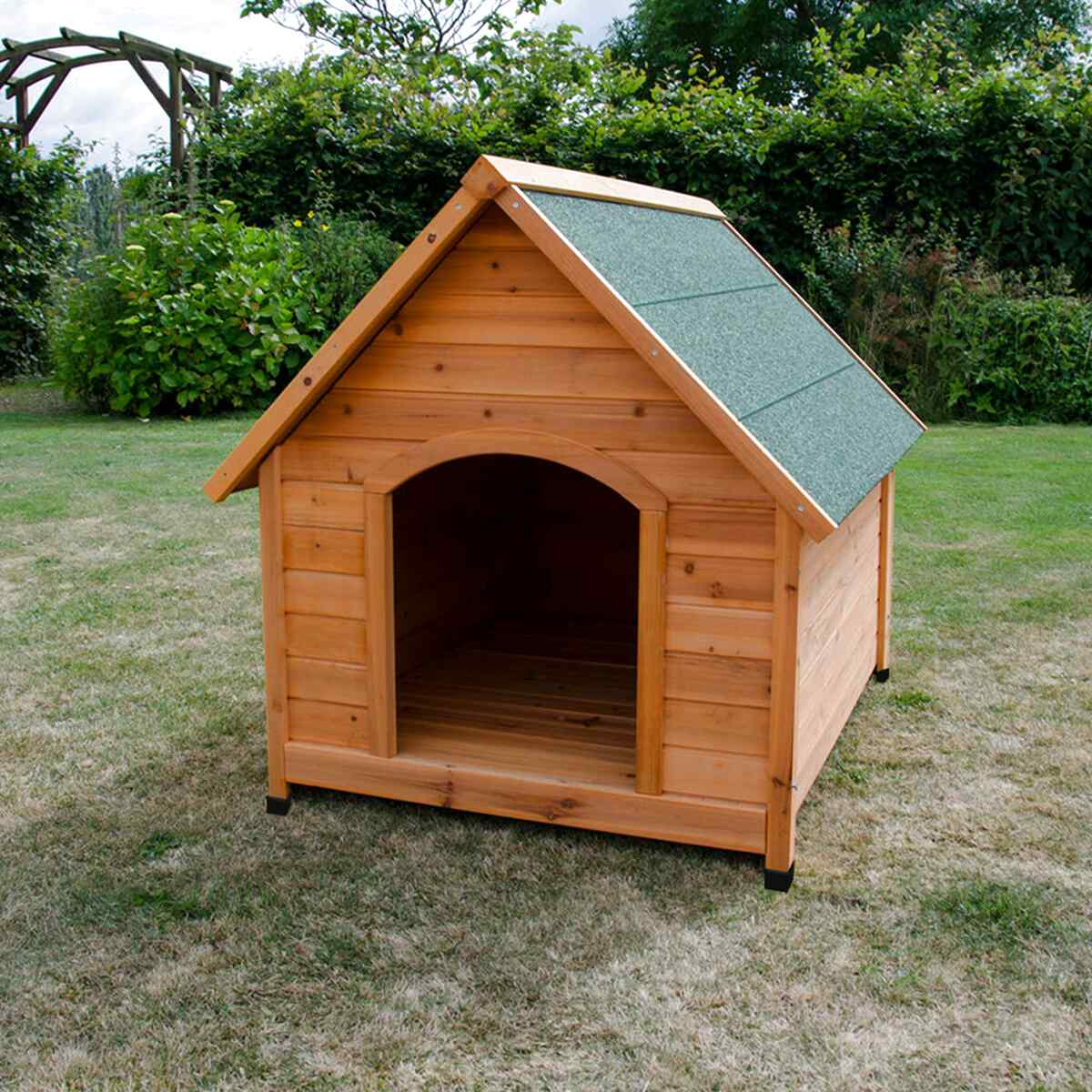 xl dog kennel for sale