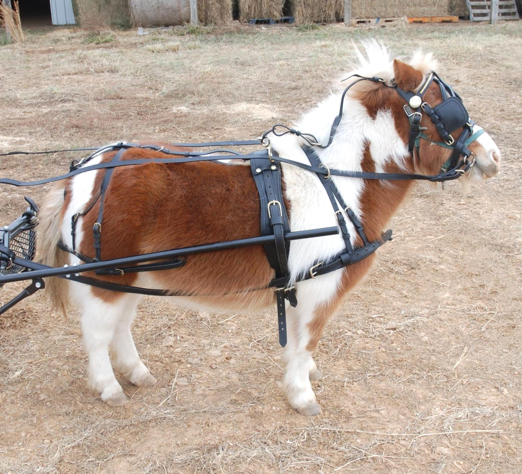 Miniature Saddle Tooled Leather 2 Seat Western Novelty