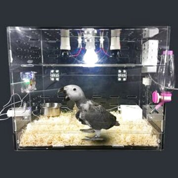 bird incubator for sale