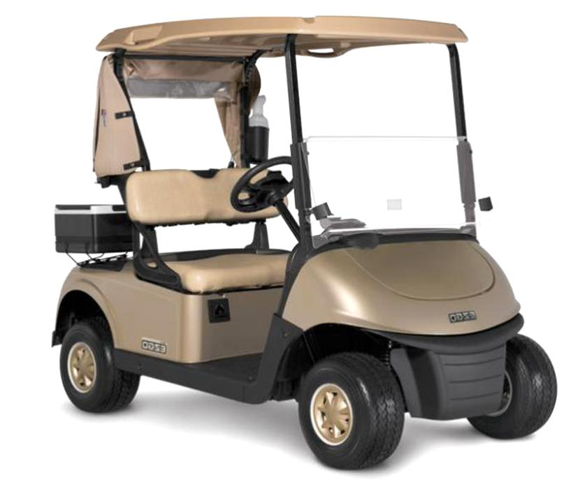 rxv golf cart for sale
