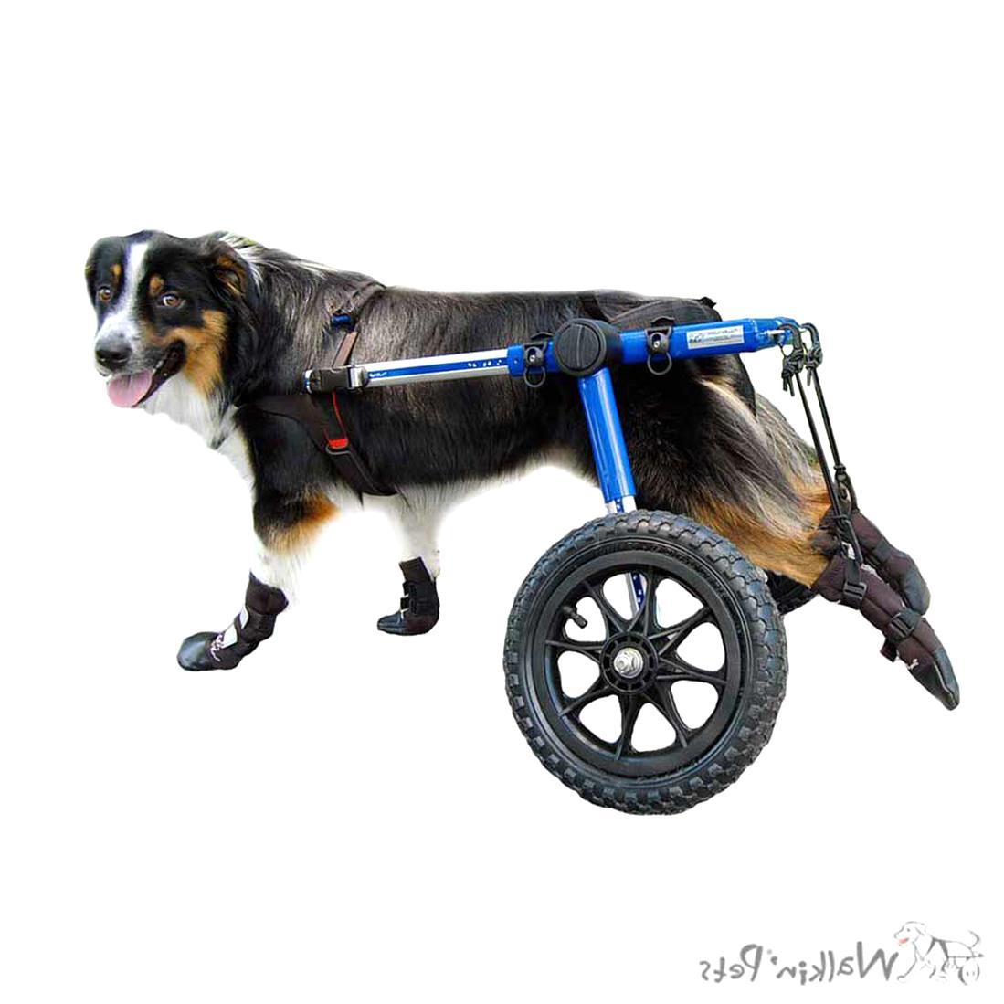walkin wheels for sale