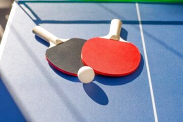 ping pong table tennis for sale