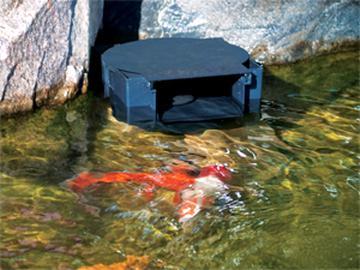 pond skimmer for sale